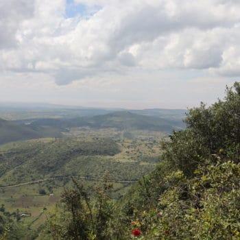 Wiederaufforstung mit FMNR in Äthiopien